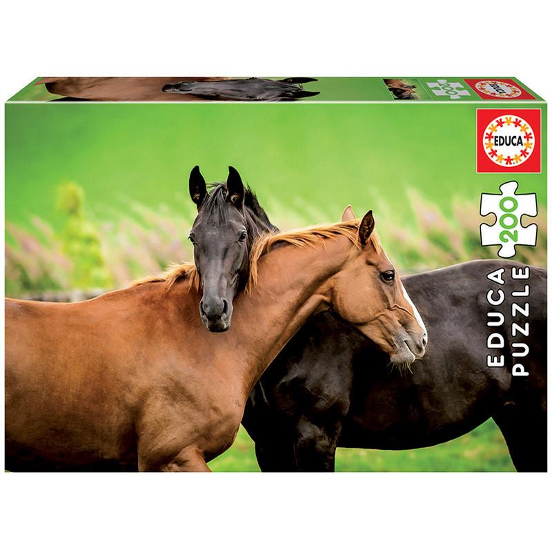 Educa 200 cavalos