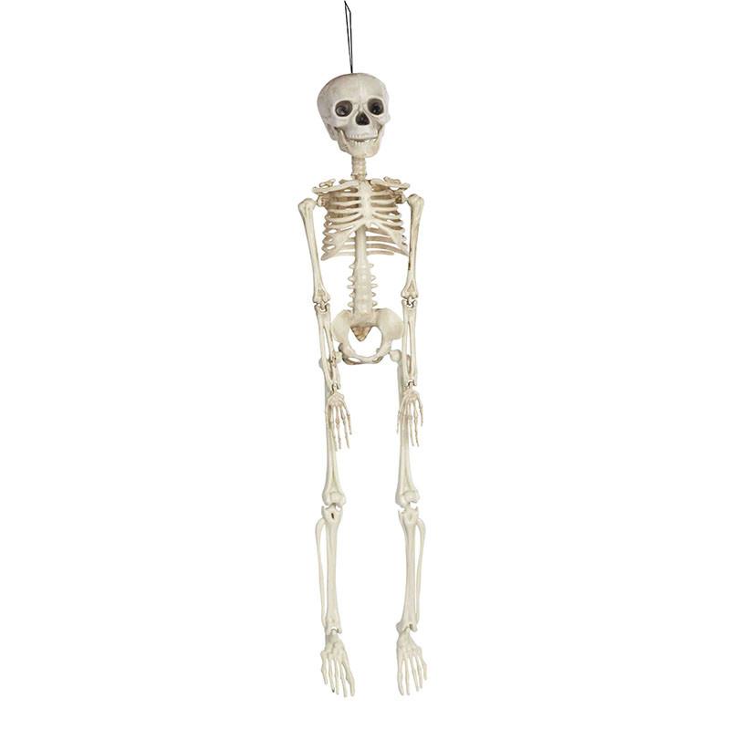 Esqueleto Pendurar 45 cm