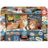 Educa Puzzle 200 gatinhos viajantes
